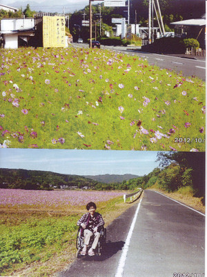Scan10124_31